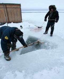 Талики у полярного круга