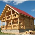 Из чего строить дом и баню?