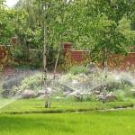 Садоводам — система автоматического полива растений.