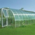 Качественная теплица – главное условие эффективного выращивания любого растения.