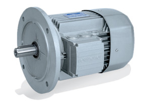 электродвигатели асинхронные трехфазные